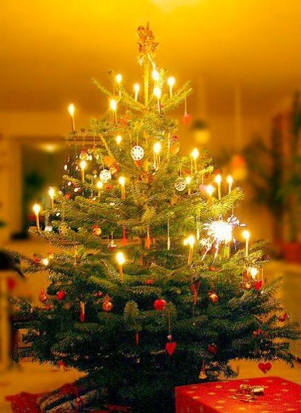 Frohe Weihnachten / Merry Christmas / Buon Natale